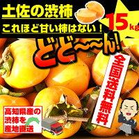 最高の食感甘くて美味しい次郎柿お徳用高知産15kg!1玉200g前後・約100玉入