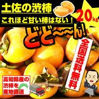 最高の食感甘くて美味しい次郎柿お徳用高知産20kg!1玉200g前後・約100玉入