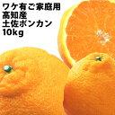 【送料無料】高知産 土佐ポンカン10kg!ワケ有ご家庭用サイ...