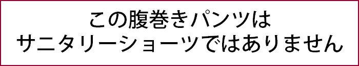 腹巻きパンツ綿素材2枚セットM/L/LL腹巻パンツレディースメール便送料無料
