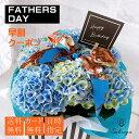 【☆クーポン☆栄養剤付】アジサイ あじさい 紫陽花 ギフト 父の日 花 プレゼントおすすめ 鉢物 母