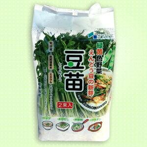 豆苗 えんどう豆の新芽(スプラウト)6パック入【新鮮野菜生活のサラダコスモ】