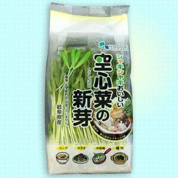 空心菜の新芽(スプラウト) 12パック入