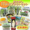 【送料無料】●新鮮スプラウト野菜11品セット【国産チコリ入り】【野菜セット】
