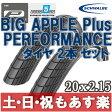 【返品保証】 SCHWALBE シュワルベ BIG APPLE PLUS ビッグアップルプラス ミニベロ タイヤ 2本セット 20x2.15 【あす楽】 02P03Dec16 0824楽天カード分割 1201_flash