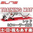 【返品保証】 ELITE エリート トレーニングマット 3本ローラー対応 ロードバイク マウンテンバイク ピスト トレーニング レッド 【あす楽】 02P03Dec16 0824楽天カード分割 1201_flash
