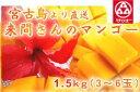 (3101)蔵≪今年も感動してください!1年間愛情を込めて育...