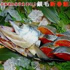 銀毛新巻鮭(北海道知床沖産)1尾2キログラム姿切り送料無料です