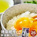 令和3年産【送料無料】 徳島コシヒカリ 阿波踊り米 25kg(5kg×5袋)白米/玄米 ※北海道、沖縄及び離島は別途発送金が発生します
