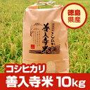 大人気の無人島米がさらに美味しく生まれ変わりました!【平成24年度産】徳島県産こしひかり100%「善入寺米」10kg【送料無料】※北海道、沖縄及び離島は別途発送料金が発生します。