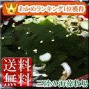 San_wakame_300_003