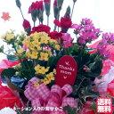 母の日 カーネーション 鉢花 も入ってます♪季節の鉢花かご盛...