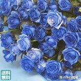 花瓶のいらない花束そのまま飾れるハッピーブーケ!!花瓶のいらない花束【Lサイズ】