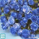 青バラの花束【35本】3種類の青バラが選べる 青いバラ 青薔薇