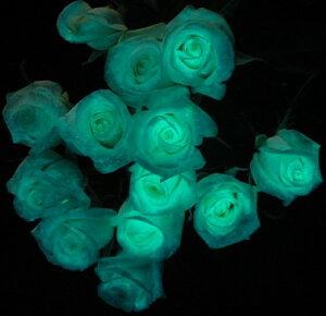 輝く女性の意味を込めて!暗闇で光る魔法のバラ!?【ブルー】光るバラ魔法のバラ1本【サプライ...