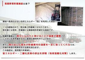 北海道産JAとうや湖雪蔵貯蔵じゃがいも