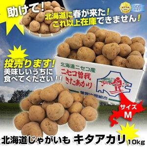 ねっちり濃厚食感で、甘みが強い!これが期待の人気者!北海道のキタアカリ!北海道産 キタア...