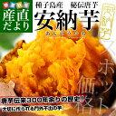 鹿児島県より産地直送 種子島産「安納芋」約3キロ さつまいも 唐芋 からいも カライモ