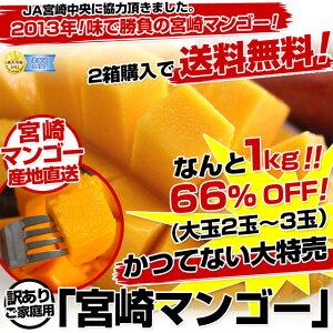 【破格値で大奉仕!】宮崎マンゴーの味!皆に広めてください。外観ではなく味で勝負。JA宮崎中...