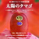 宮崎県 JA宮崎中央 産地直送品!「太陽のタマゴ」2Lサイズ (350g~459g)×2玉【楽ギフ_のし】