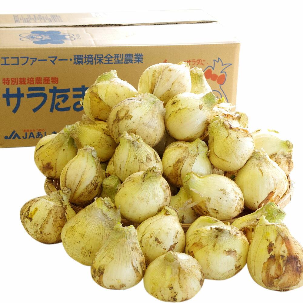 熊本県より産地直送 JAあしきた サラたまちゃん 規格外 (訳あり品) 約10キロ  玉葱 タマネギ