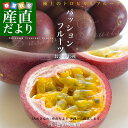 送料無料 沖縄県より産地直送 JAおきなわ パッションフルーツ Mから3Lサイズ 800gから1キロ(8玉から12玉)