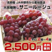 長野県JA中野市サニールージュ