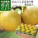 福島県より産地直送 JAふくしま未来の梨 (あきづき梨)5キロ(10玉から16玉) 送料無料 なし 梨 ナシ