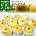 青森県より産地直送 JAつがる弘前 トキ 超大玉 5キロ (9玉から10玉) 送料無料 りんご リンゴ 林檎