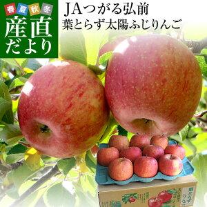 青森県より産地直送 JAつがる弘前 葉とらず太陽ふじりんご 3キロ(9玉から13玉) 糖度13度以上 林檎 リンゴ 送料無料