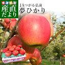 青森県より産地直送 JAつがる弘前 夢ひかり 3キロ(9玉から13玉) 林檎 りんご リンゴ 送料無料