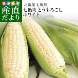 送料無料 北海道七飯町産 池田さんグループの朝どりトウモロコシ Lサイズ 300g×10本 (ロイシーホワイト他) とうもろこし ※クール便