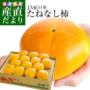 送料無料 和歌山県より産地直送 JA紀の里 たねなし柿 大玉3Lサイズ 3.75キロ(14玉入) カキ かき 柿