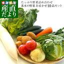 市場からご自宅へ直送 たっぷり野菜詰め合わせ 応援セット (国産おまかせ野菜10品セット)※キャベツ、レタス、ほうれん草、小松菜、きゅうり、トマト、ナス、大根、ごぼう、じゃがいも、たまねぎ、にんじんなどの中からおまかせ10品の詰め合わせです・・・