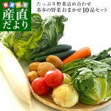 市場からご自宅へ直送 たっぷり野菜詰め合わせ 応援セット (国産おまかせ野菜10品セット)※キャベツ、レタス、ほうれん草、小松菜、きゅうり、トマト、ナス、大根、ごぼう、じゃがいも、たまねぎ、にんじんなどの中からおまかせ10品の詰め合わせです
