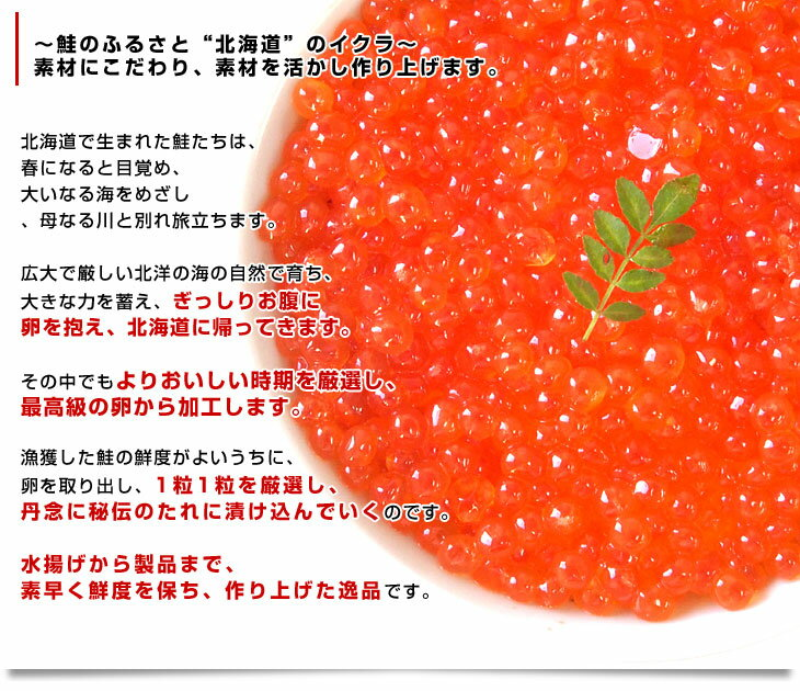 北海道産 いくら醤油漬け 200g×2パック