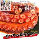 北海道産 孝子屋のタコの柔らか煮 <たこ親父> 300g×3袋セット 送料無料 2