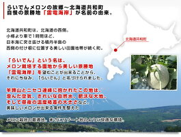 北海道JAきょうわ産地直送らいでんメロン