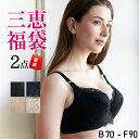 【送料無料】ツン胸メーカー2点セット福袋(育乳ブラ 盛りブラ...