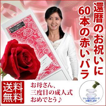 60本の薔薇の花束を還暦を迎えたお父さんお母さんへ贈りましょう