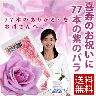 ≪喜寿のお祝いに77本の紫のバラ≫【送料無料】セール【豪華ラッピング付】【トゲ取り処理済】【メッセージカード付】※お届け日が近い場合はミックスカラーになります