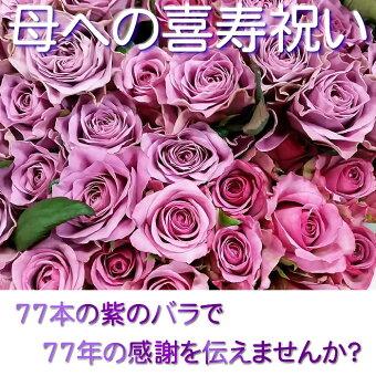 ≪喜寿のお祝いに77本の紫のバラ≫2【送料無料】セール【豪華ラッピング付】【トゲ取り処理済】【メッセージカード付】※お届け日が近い場合はミックスカラーになります