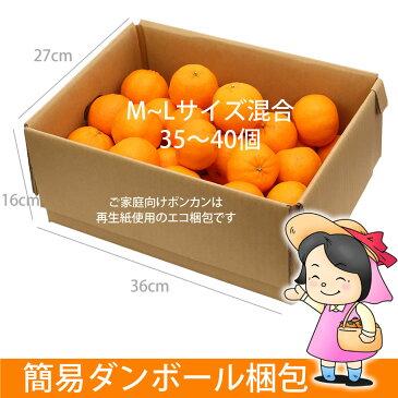 訳あり ポンカン 5kg 高知県産 産地直送 宅配便 送料無料/ご家庭用 フルーツ 果物 みかん