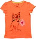 BABY GAP(ベビーギャップ) わんちゃんプリントTシャツ(Orange)