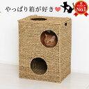 猫ちぐら 幅43cm ペット用 ボックス 天然素材 ペット用ハウス 猫ハウス 遊び場おもちゃトンネル 籠カゴかご箱ボックス 猫トンネルおもちゃ 箱 はこ型 にゃんこ 猫 うさぎ ハウス 小動物用 トンネルおもちゃ ウォーターヒヤシンス製