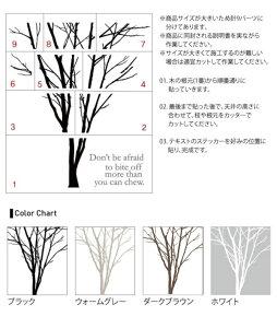 サンサンフー【ウォールステッカー】朝の木A