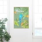 ポスター 鳥 アルミアートフレーム 【トロピカル・バード452x649mm】 飾るだけでおしゃれなインテリアポスター!カフェ風 プリント サンサンフー ※アルミ製フレーム付