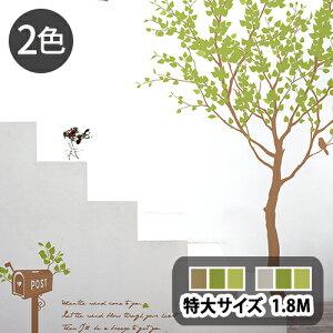サンサンフー【ウォールステッカー】リトルガーデン2B