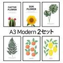 ポスター インテリア A3 ボタニカル 植物 おしゃれ アートポスター...