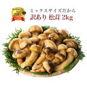 訳あり (ミックスサイズだから) 松茸 まつたけ 天然 冷凍...